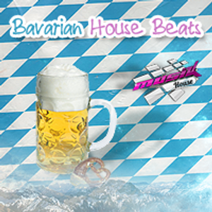 dJBenn - Bavarian House Beats Vol.2