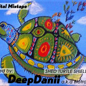 SHED TURTLE SHIELD....!! Podcast 001