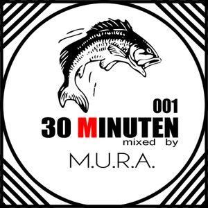 30 MINUTEN mixed by M.U.R.A.  vol. 1