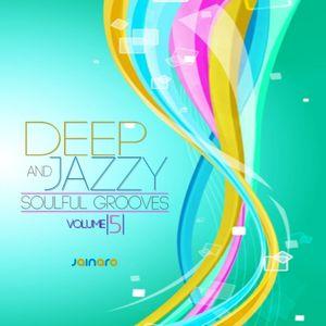 Deep & Jazzy Soulful Grooves Volume 5 by Dj Jainaro