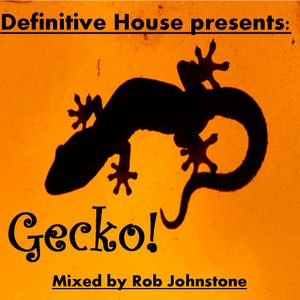Rob Johnstone & Definitive House present:     Gecko!