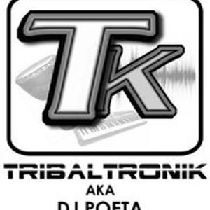 Tribaltronik DJ Set Agosto 2011 (Progressive Tech House)