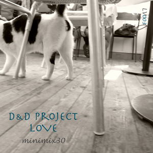 D&D Pro minimix30 -LOVE- LV003