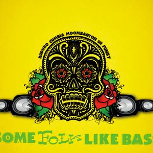 Some Folk Like Bass promo mix