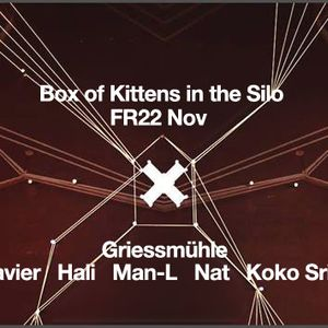 Koko Sripakdee - Box of Kittens November 2014 - Part 1