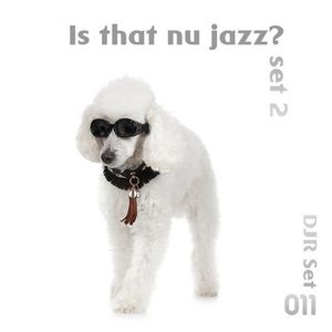 Is that Nu Jazz? Vol. 2