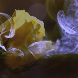 Aromaterapija palīdz psihoemocionāli un ārstē