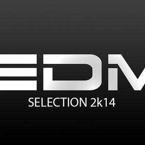 EDM Selection 2K14