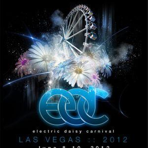 Fedde Le Grand - Live @ Electric Daisy Carnival 2012, Las Vegas, E.U.A. (08.06.2012)
