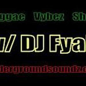 Reggae Vybez Show w/ DJ Fyah, 23-8-13 on Network USZ