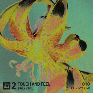 Touch and Feel w/ Brian Vidal - 19th November 2018
