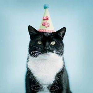 Firgun - K's Birthday Bash