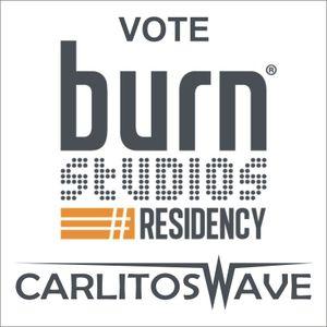 CARLITO'S WAVE present burn residency 2015