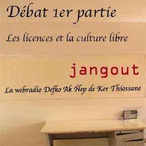 """1er partie débat """"Les licences et la culture libre"""""""