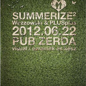 Wazzovski @ Pub Zerda 2012.06.22