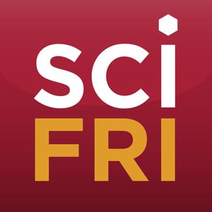 Hr1:These Brains Changed Neuroscience / Does Math Matter?