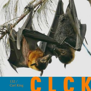 CLCK Podcast 132 - Carl King