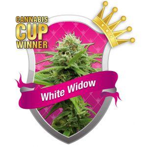 White Widow (d5e)