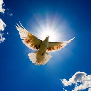 """""""De genadegaven van God's Geest"""" (deel 1) -  Br. Hans Tims Bijbelstudie 11-6-2014"""
