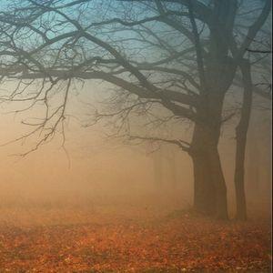 Foggy Autumn 2015 Promo Mix