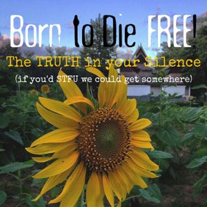 B2DF #24: The Truth in your Silence (If you'd STFU we could get somewhere)