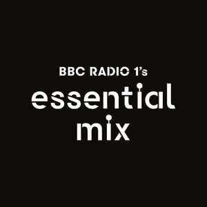 Paul Trouble Anderson - Essential Mix 1996