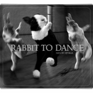 RABBIT TO DANCE