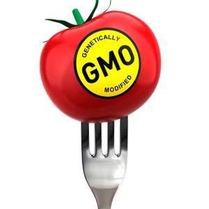 Гвоздичное море - Польза ГМО