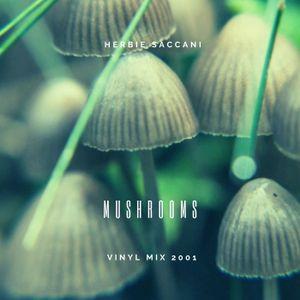 Herbie Saccani - Mushrooms - May 2001