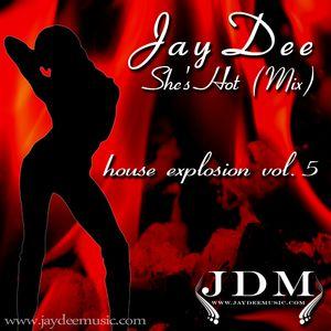 JayDee-She's Hot (Mix)