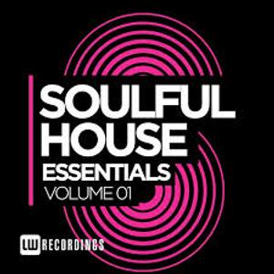 SoulFulHouse Essentials Vol 1