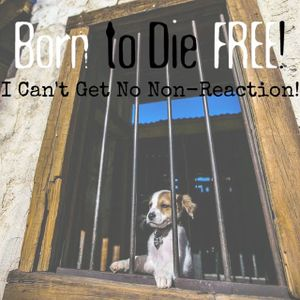 B2DF #25: I Can't Get No Non-Reaction!