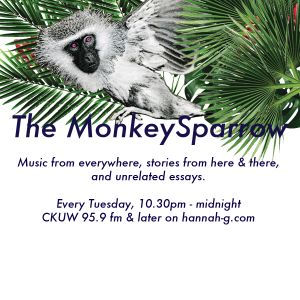 The MonkeySparrow 14 - A Few Notes On Pain