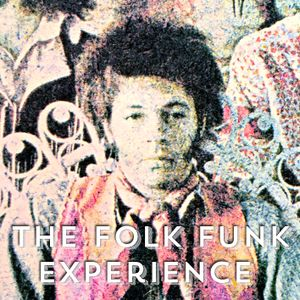 The Folk Funk Experience