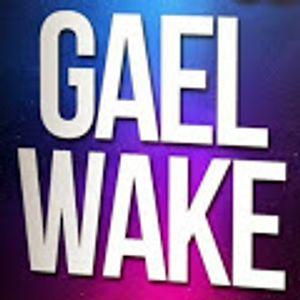 GAEL WAKE MIX HOUSSE 2015