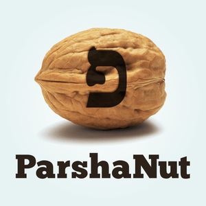 Episode 25: FOUR LINKS IN A CHAIN - Parshat Tzav