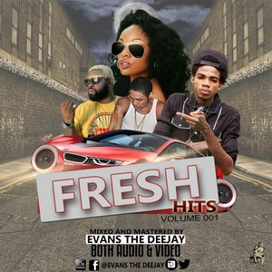 FRESH HITS VOL.1 [2017 HITS] @EVANS_THEDJ