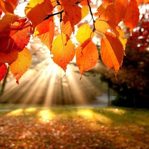 Get Ready for Autumn Mix 2015 - Mixed by DJ And1