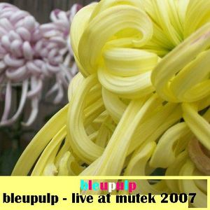 bleupulp live at mutek 2007