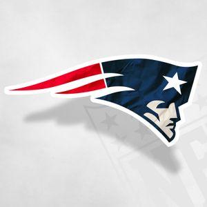 Go Patriots, Go! (BasicBird Mix)