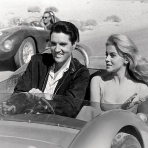 A Date With Elvis: A Primer