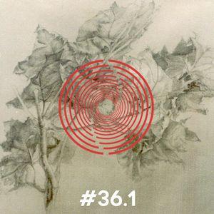 FUTURA #36.1 // Marcescente