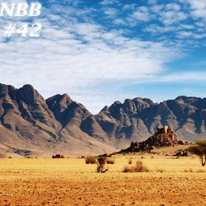 NBB #42 (Nothing But Bangers Vol. 42)