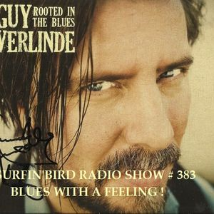 SURFIN'BIRD RADIO SHOW # 383 BLUES WITH A FEELING !