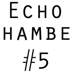 Echo Chamber #5