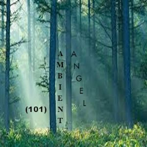 Ambient-Angel (101)