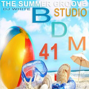 Bergischer Dance Mix Vol. 41