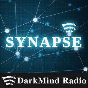 Synaps-ing  – SYN021