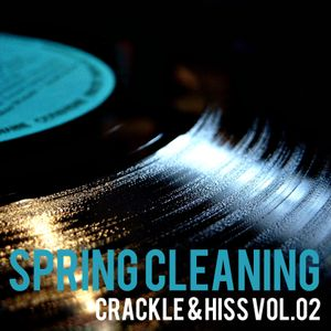 Spring Cleaning - Crackle & Hiss Vol. 02