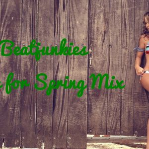 Beatjunkies Time for Spring Mix